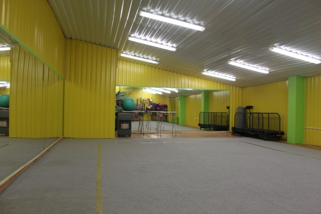 Приглашаем на занятия в новый Зеркальный зал для хендлинга и физической подготовки собак 1a7on010