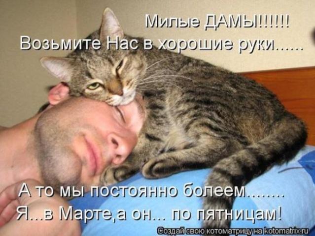 Позитивчик))) 13343010