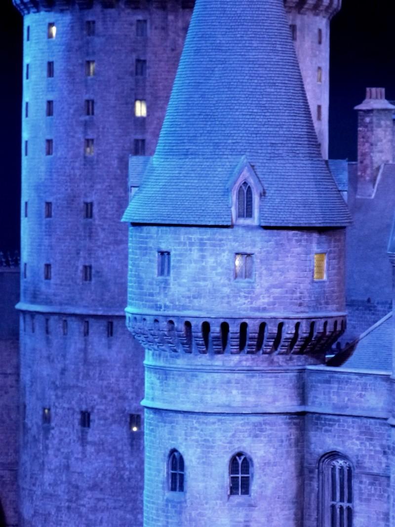 TR hors Disney, LONDON du 05.09 au 08.09 - Page 5 P1030251