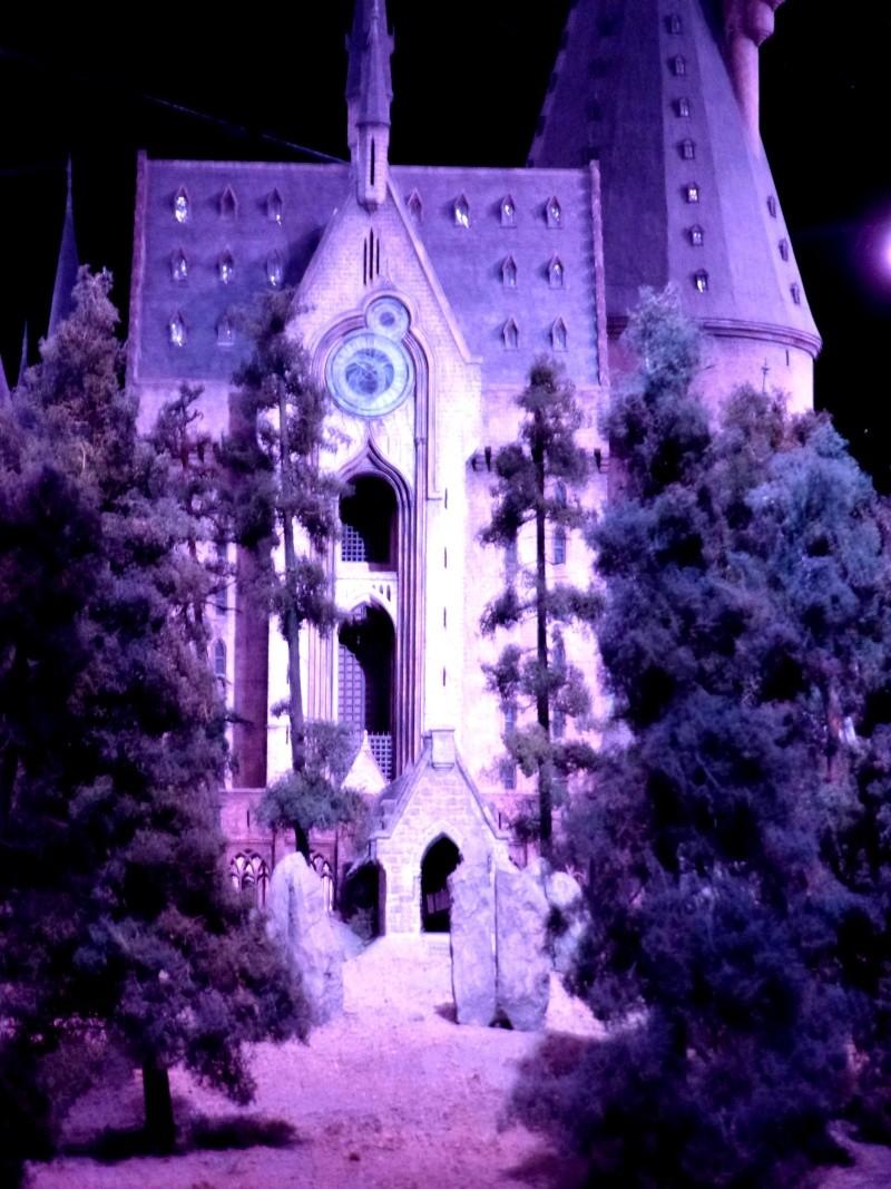 TR hors Disney, LONDON du 05.09 au 08.09 - Page 5 P1030255