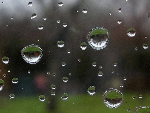 29 - La pluie !!! Rscn5710
