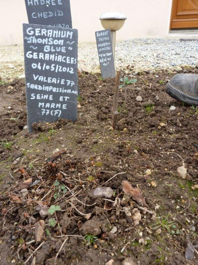 """Album photo  du jardin des poètes"""" troisième album"""" P1270038"""
