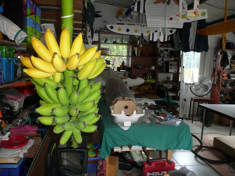 Le réseau de Gaetan - Page 4 Banane10