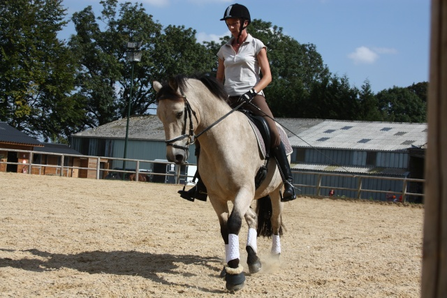 PEPITA - ONC poney née en 2003 - adoptée en février 2013 par zoune - Page 2 00910