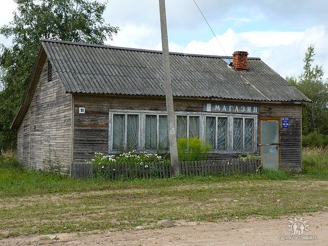 Евсеевка 115