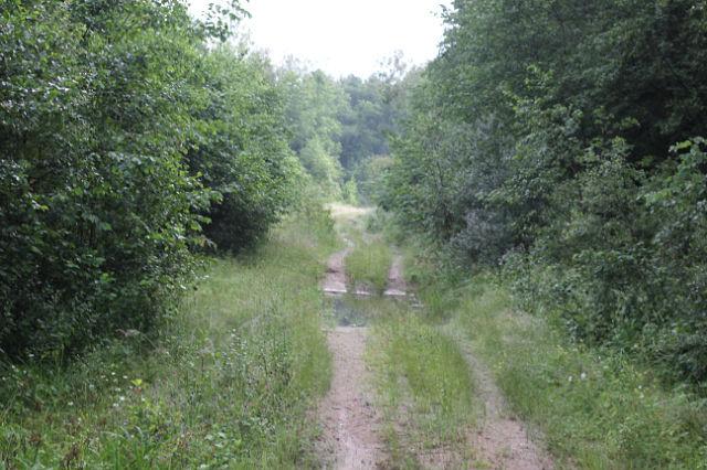 Дороги которые обозначены на топографических картах Dyndnd13