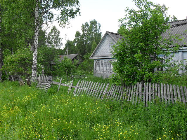 Петрочаты Getim106