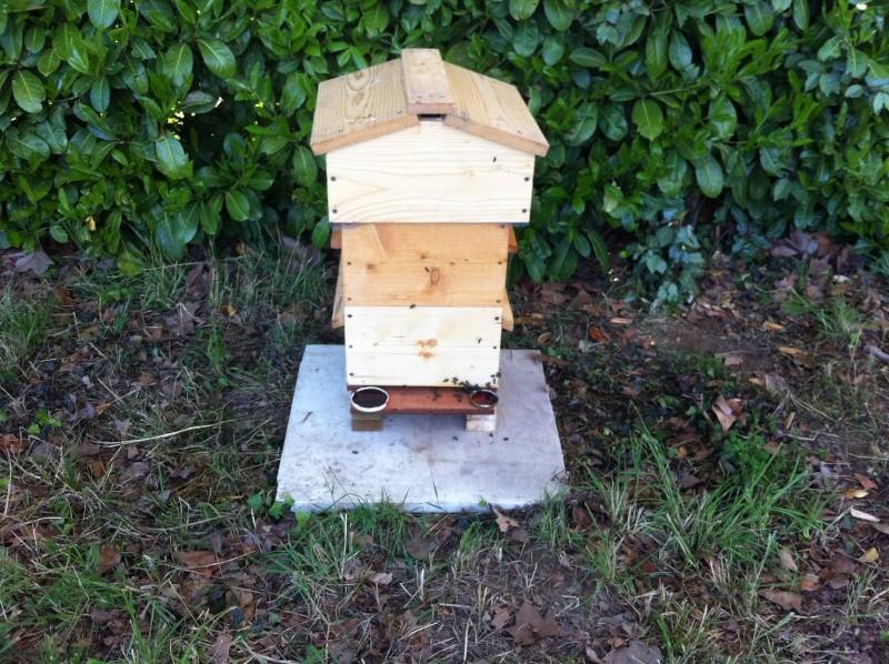 L'apiculture mene à tout 2012-010
