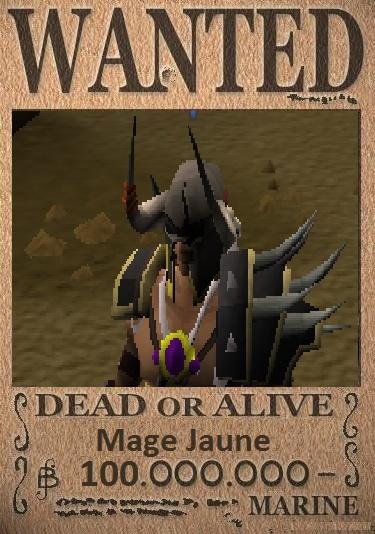 Journal de Bord du capitaine Mage jaune. Wanted10