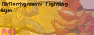 MrNorskgamers Fighting Gym Mr10