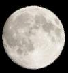 Secret Paradise  Moon10
