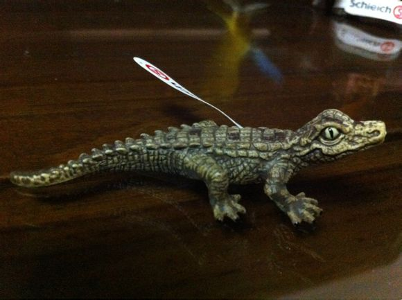 my new 2013 schleich animals 29381f10