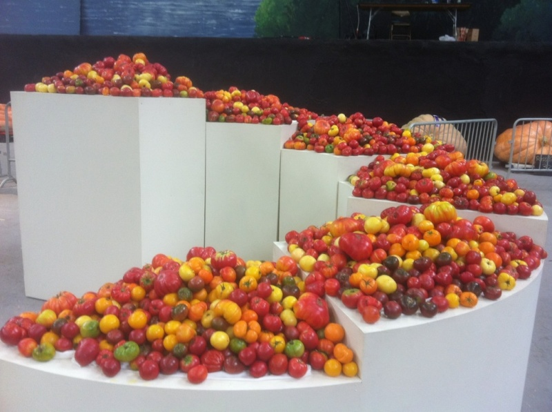 The National Heirloom Exposition - Sept in CA  Heirlo10