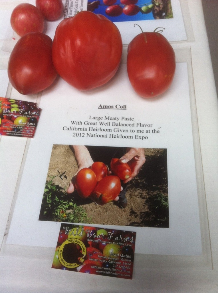 The National Heirloom Exposition - Sept in CA  Heirlo13