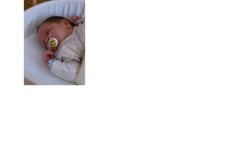 Bilder für die lieben Dementen - Seite 6 Bvb_ba11