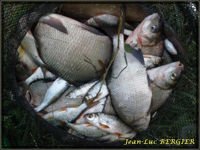 Nouvelle partie de pêche avec notre ami Jyelle P8160023