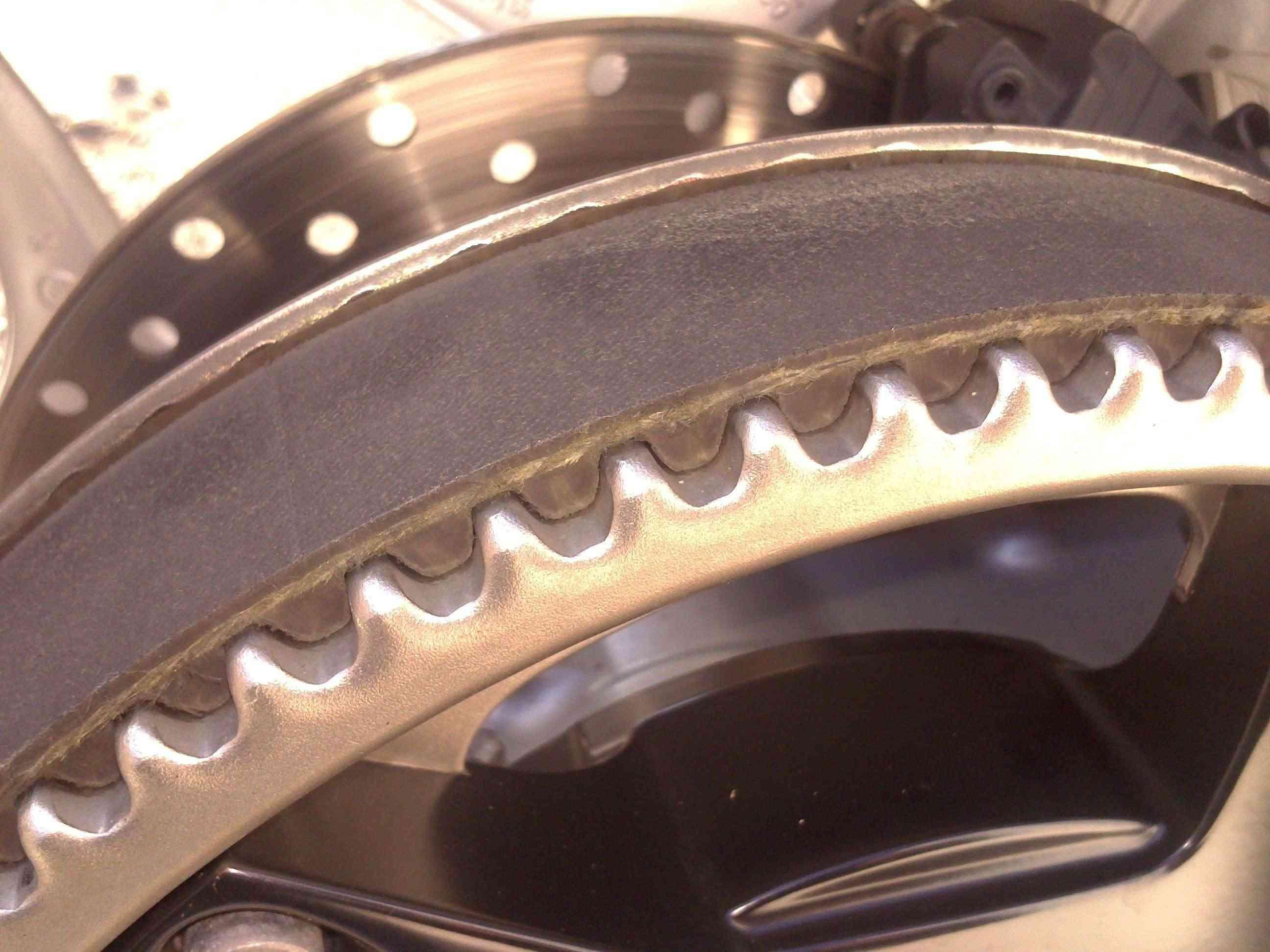Courroie crantée de Scarver Dsc_0112