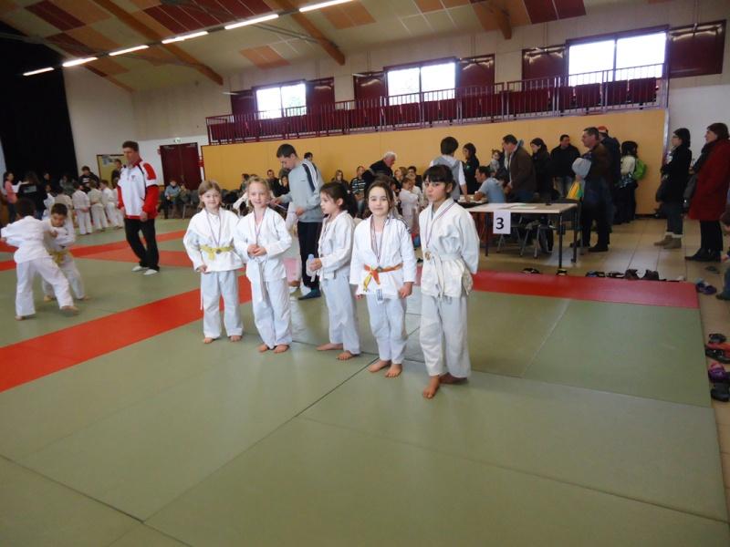 17 mars 2013 - compétition à Saint Germain Laval 20pt10