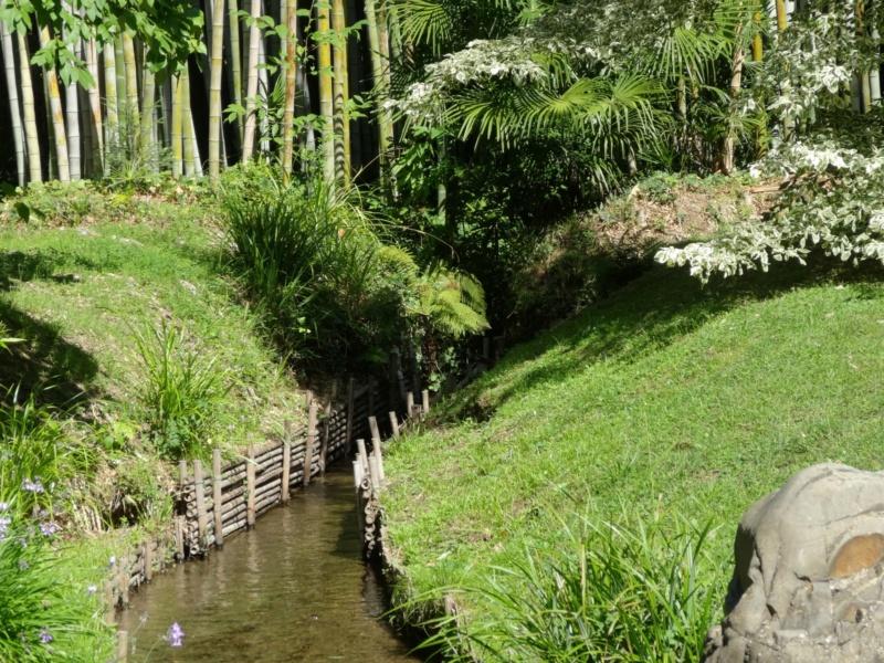 La bambouseraie à Anduze ( GARD) Dsc02120
