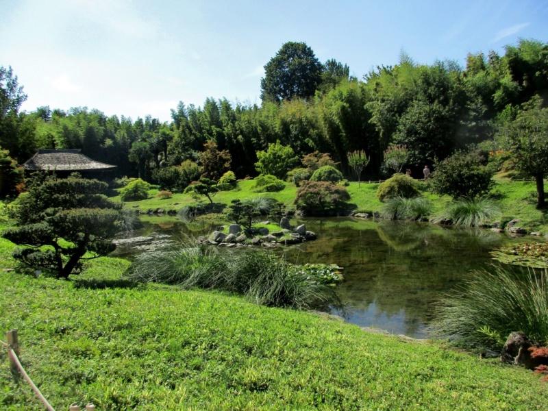 La bambouseraie à Anduze ( GARD) Img_0010