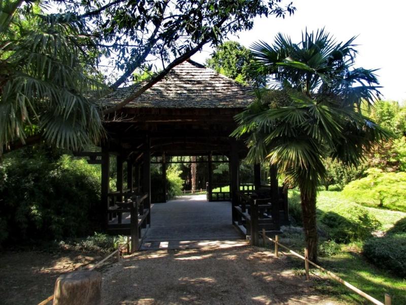 La bambouseraie à Anduze ( GARD) Img_0011