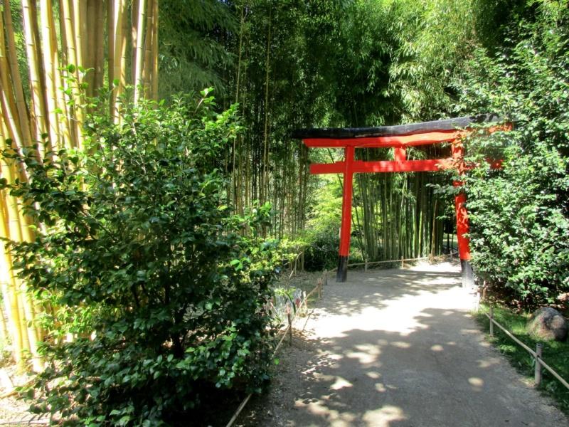 La bambouseraie à Anduze ( GARD) Tori_i11