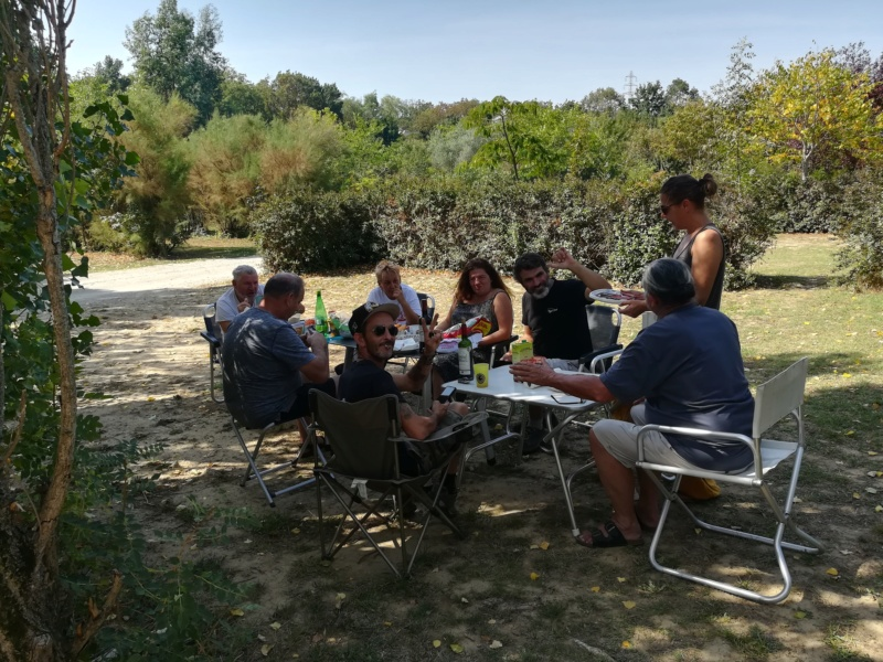 Rasso SUD 2019 a Carcassonne - Page 6 Img_2017
