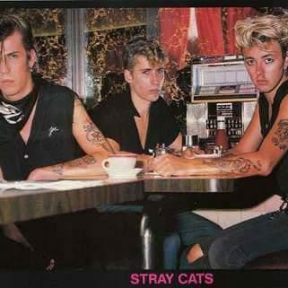STRAY CATS - Página 3 Fb_img18