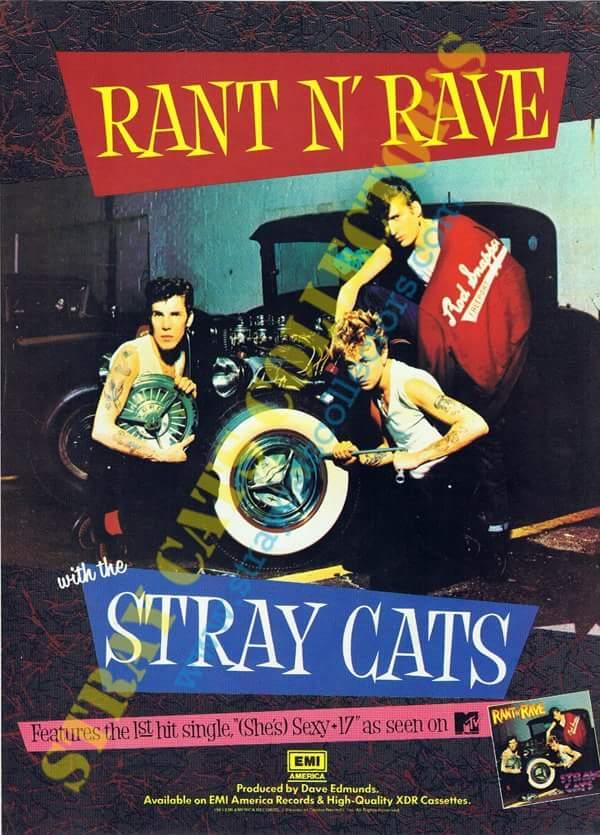 STRAY CATS - Página 3 Fb_img54