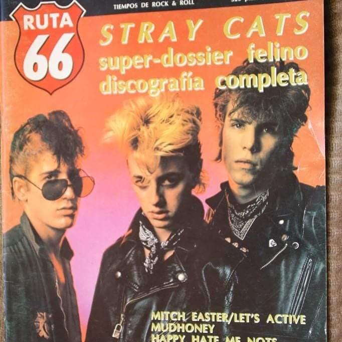 STRAY CATS - Página 3 Fb_img65
