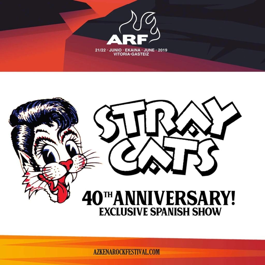 STRAY CATS - Página 3 Img_2161