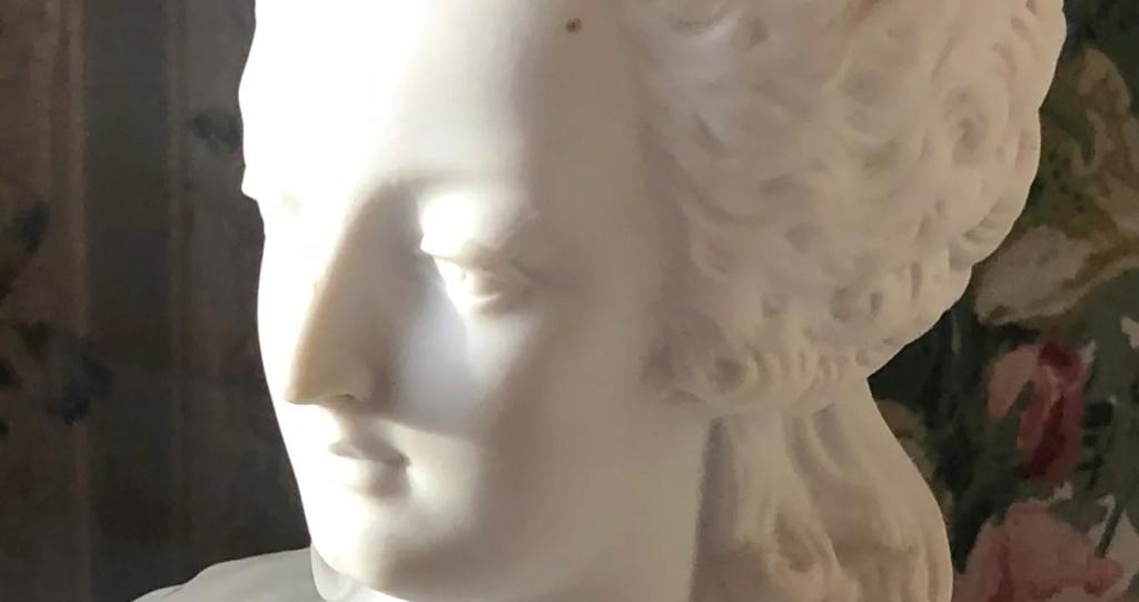 A vendre: bustes Marie Antoinette - Page 9 Zducre16
