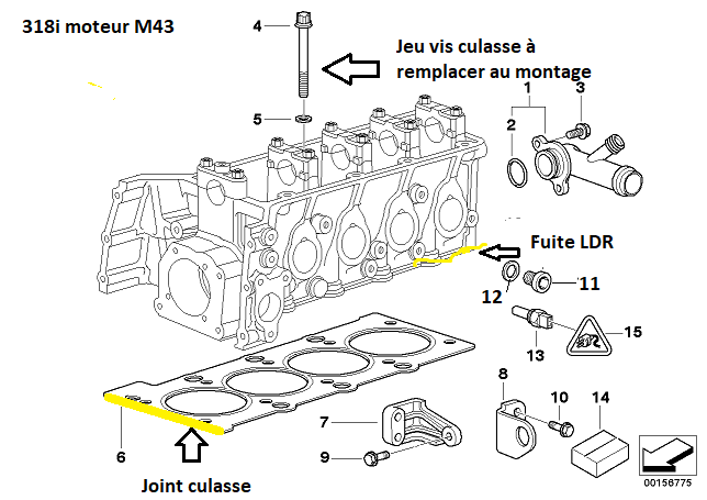 [ BMW E46 318i M43 an 1999 ] Joint de culasse qui suinte le LDR (Résolu) 11_20511