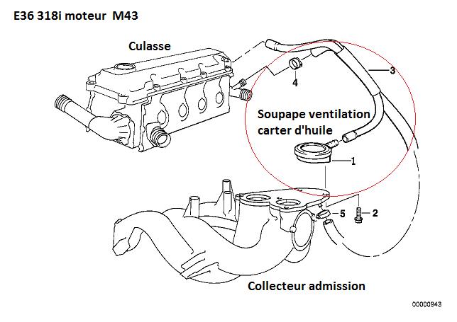 [ BMW E36 318i M43 an 1997 ] récupérateur d'huile  11_e3610