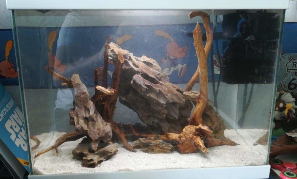 [PROJET] Création d'un bac à crevettes  Receiv42