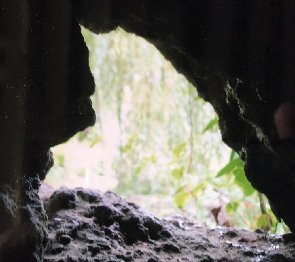 La grotte du Hameau de Marie-Antoinette 7e2ed110