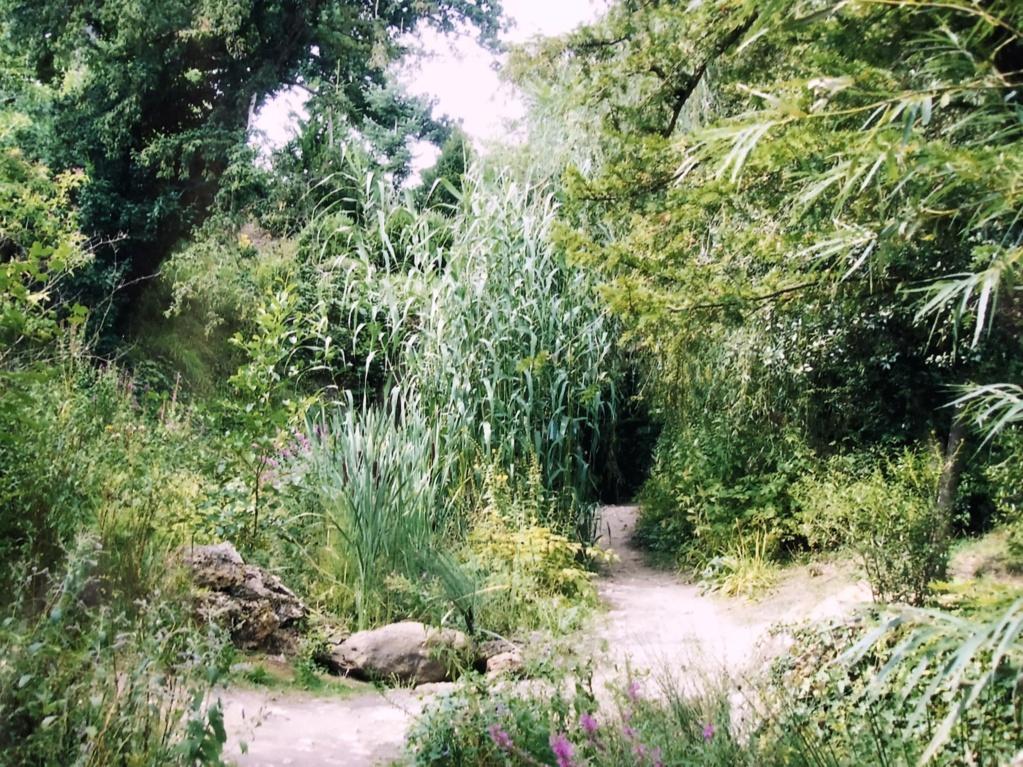 La grotte du Hameau de Marie-Antoinette D0aac410