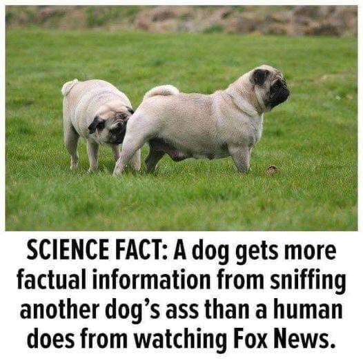 Science fact 12695210