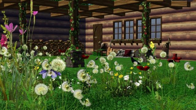 Galerie de Ptitemu : quelques maisons. - Page 31 Alpage11