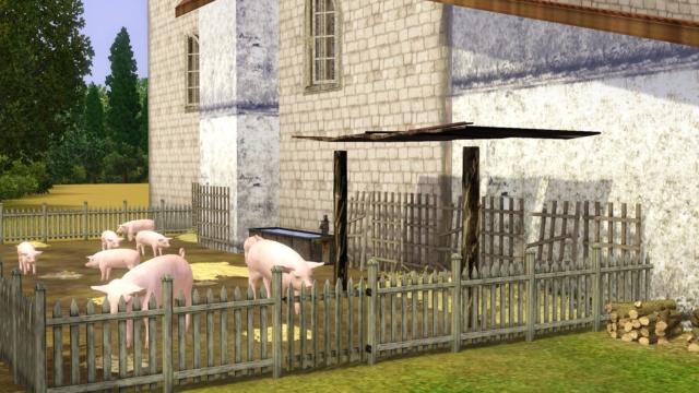 Galerie de Ptitemu : quelques maisons. - Page 26 Moulin15