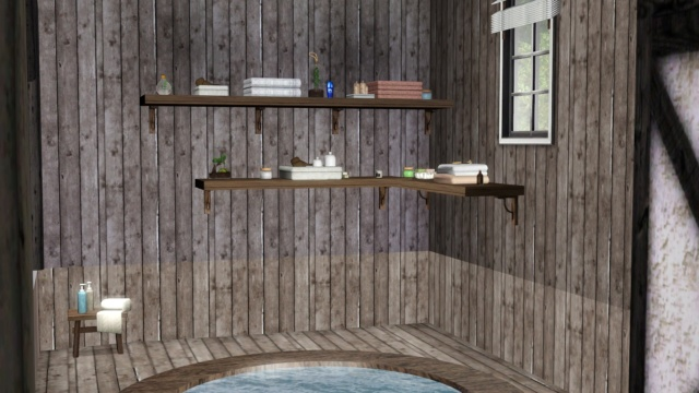 Galerie de Ptitemu : quelques maisons. - Page 28 Sauna10
