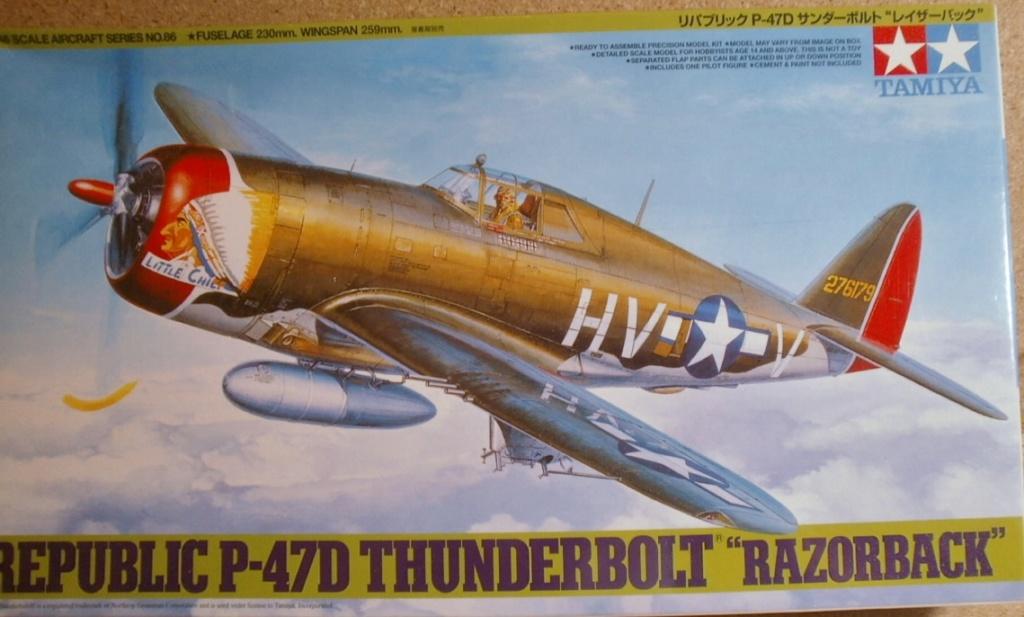 "P 47D ""Razorbak""  GC II/5 Lafayette P7200010"