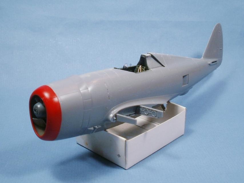 "P 47D ""Razorbak""  GC II/5 Lafayette - Page 4 P8170012"