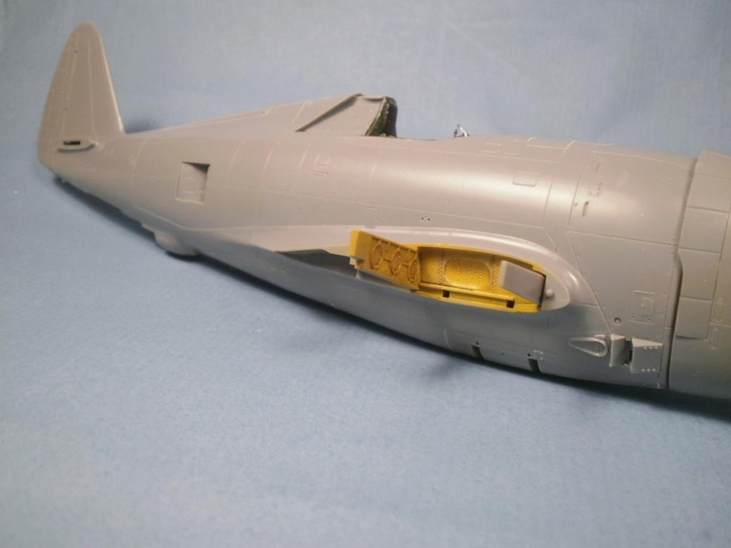 "P 47D ""Razorbak""  GC II/5 Lafayette - Page 5 P8180012"