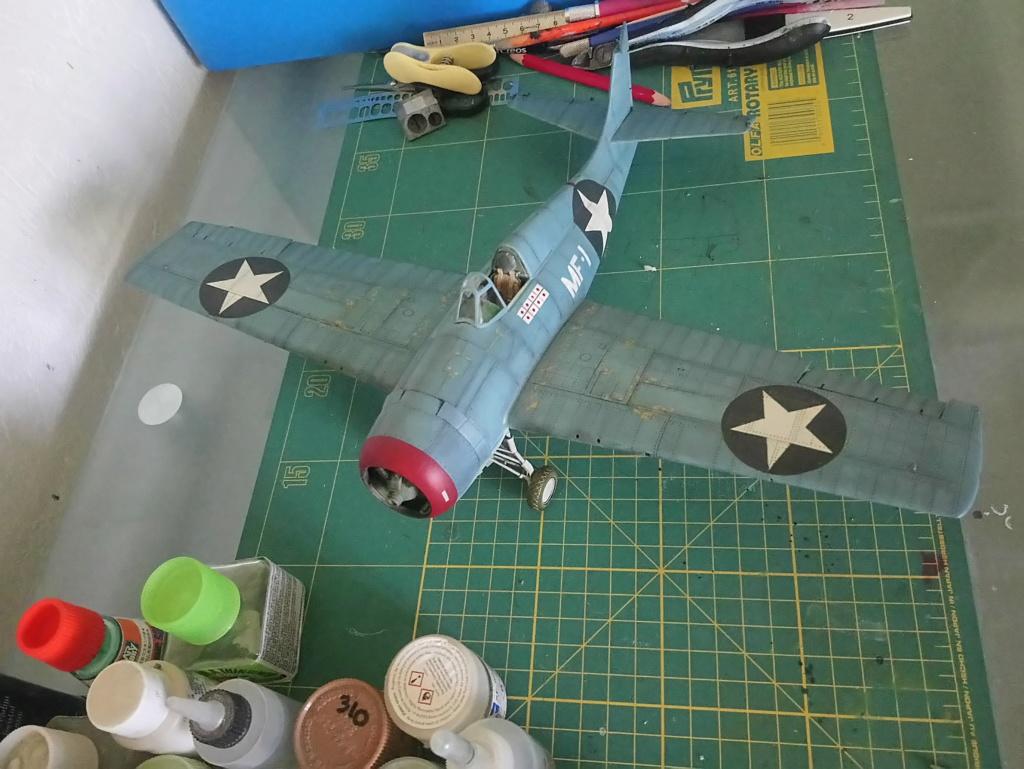 """Grumman F4F-3  1/32   """"les diables de Guadalcanal"""" - Page 3 Dsc_0256"""
