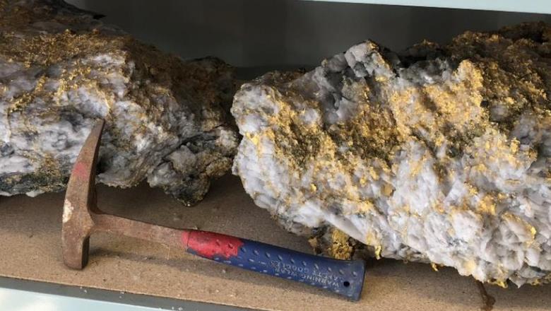 В Австралии нашли огромные золотые самородки. Вес крупнейшего — почти 100 кг Image311