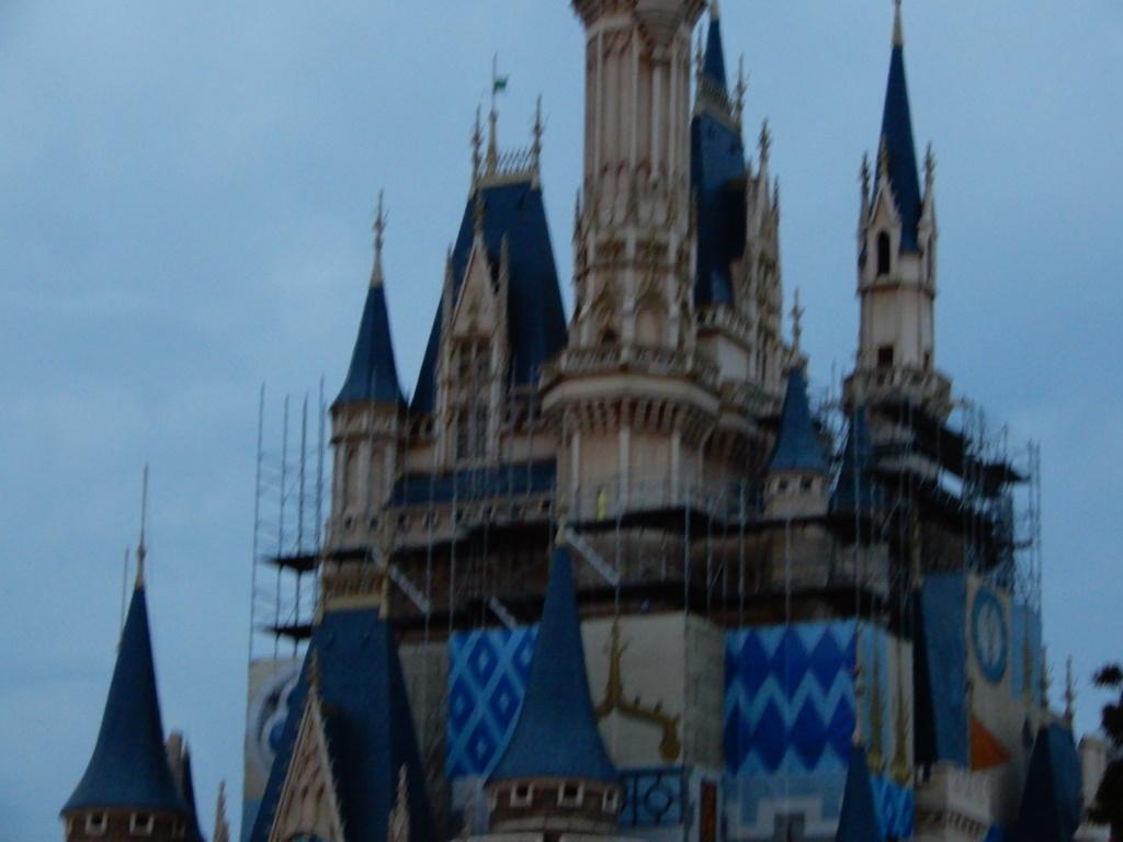 Tokyo Disney Resort en général - le coin des petites infos - Page 17 Dscn7510