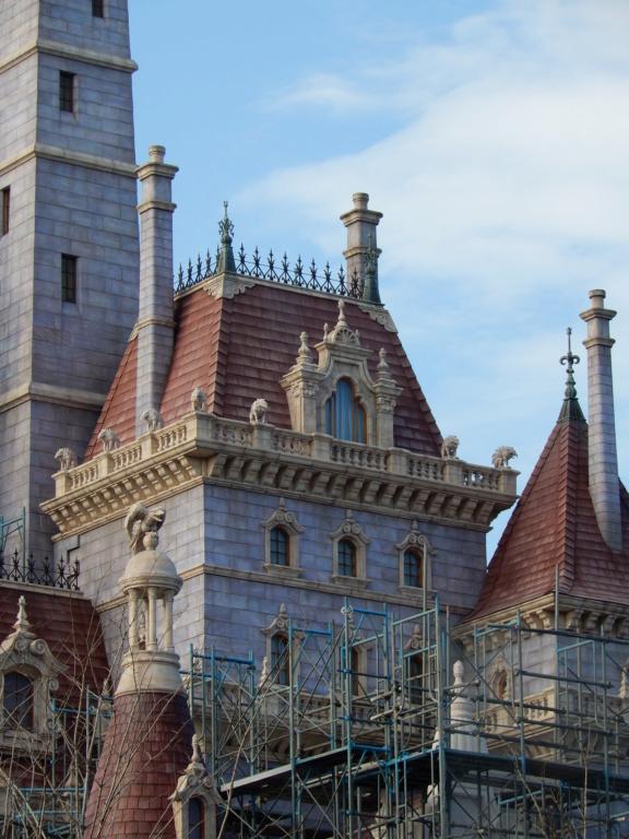 [Tokyo Disneyland] Nouvelles attractions à Toontown, Fantasyland et Tomorrowland (28 septembre 2020)  - Page 7 Dscn8420