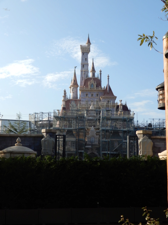 [Tokyo Disneyland] Nouvelles attractions à Toontown, Fantasyland et Tomorrowland (28 septembre 2020)  - Page 7 Dscn8426