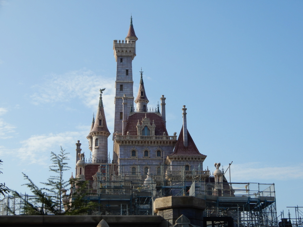 [Tokyo Disneyland] Nouvelles attractions à Toontown, Fantasyland et Tomorrowland (28 septembre 2020)  - Page 7 Dscn8427